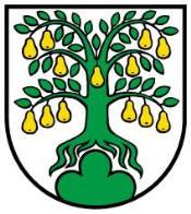 Gemeinde Oberwil-Lieli - 9 Zimmer