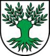 Gemeinde Widen - 20 Zimmer