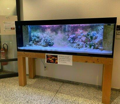 Aquarium Cafeteria