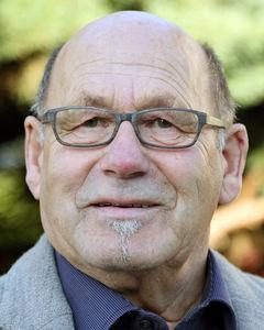 Ferdi Steinmann